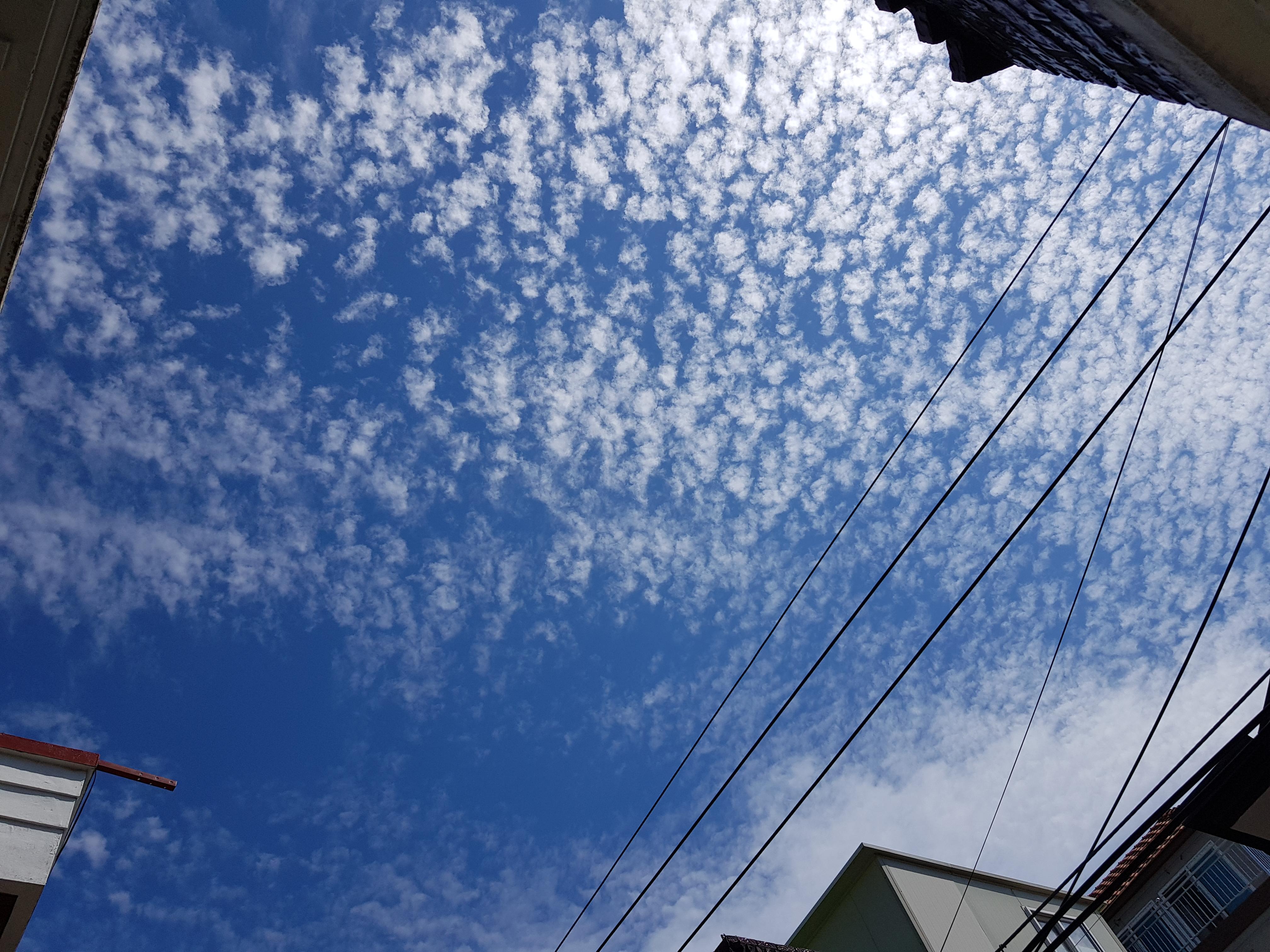 190830파란하늘.jpg