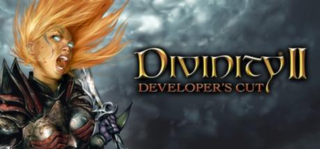 Divinity II Developer's Cut.jpg